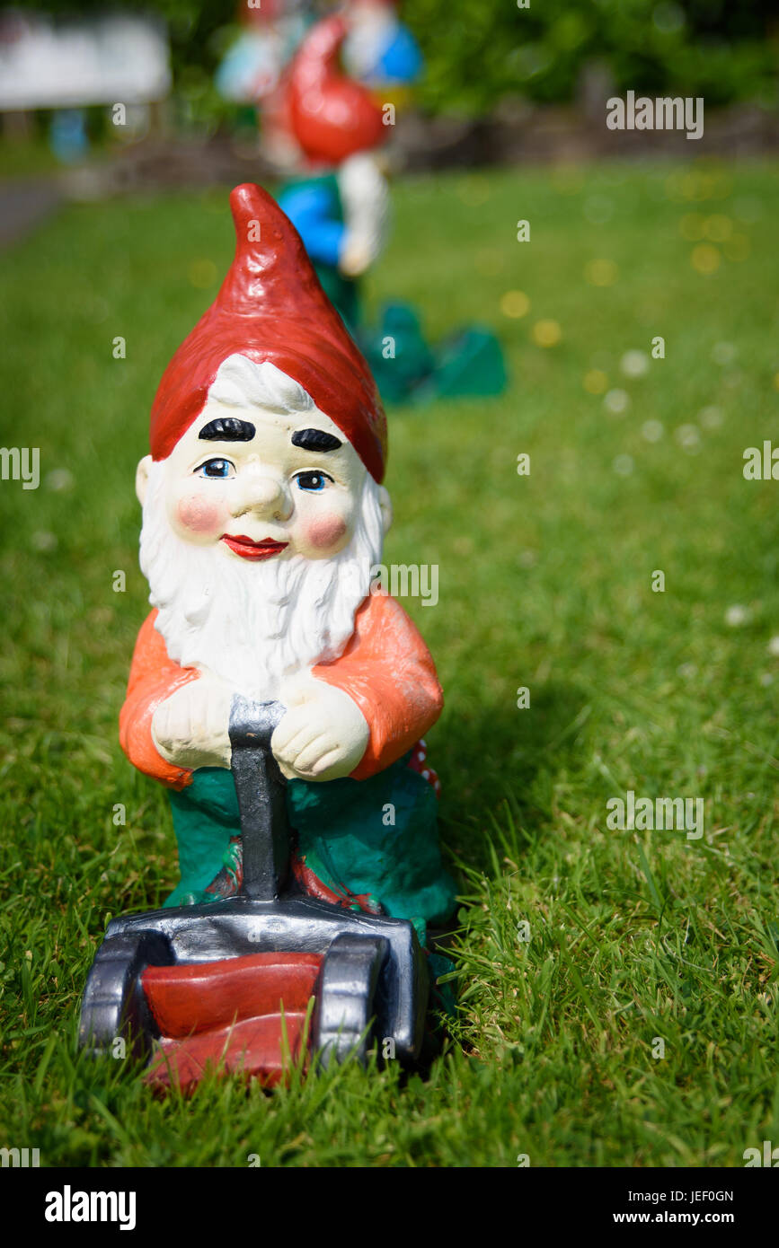 A gnome mowing the grass - Stock Image