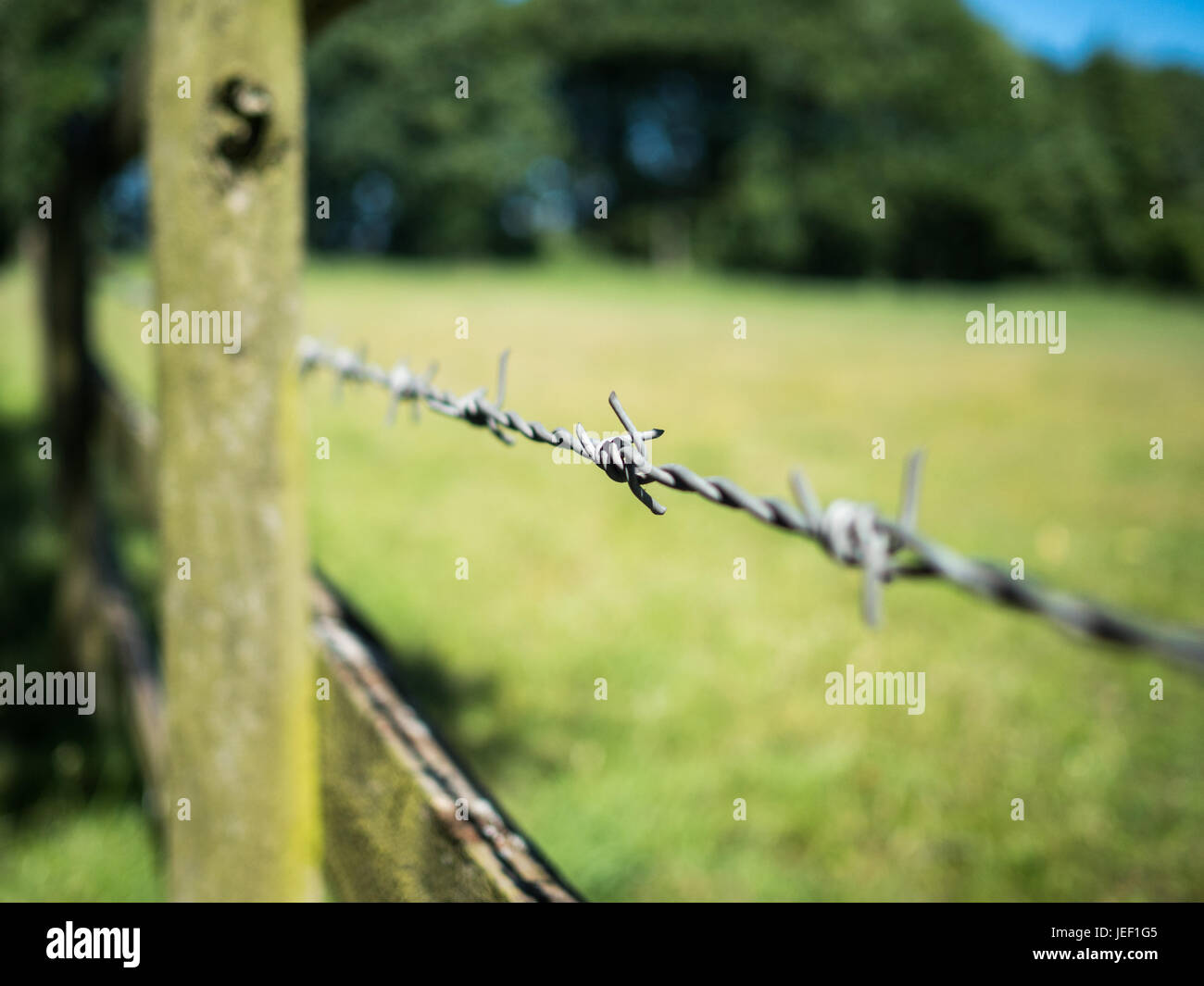 View along a barbed wire and wooden fence covered with lichen next to an open green field near St Albans, Hertfordshire, - Stock Image