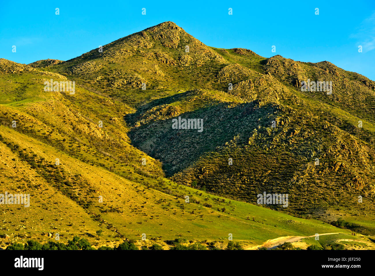 Grass covered hill chain, Orchon Valley, Mongolia - Stock Image