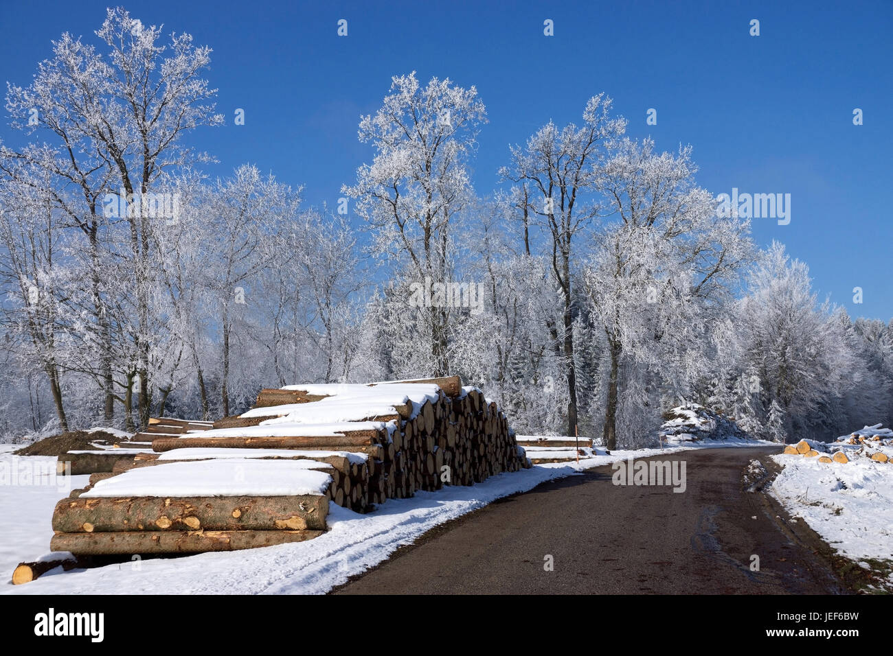 Felling in winter, wooden pile in the street edge., Holzeinschlag im Winter, Holzstapel am Strassenrand. Stock Photo