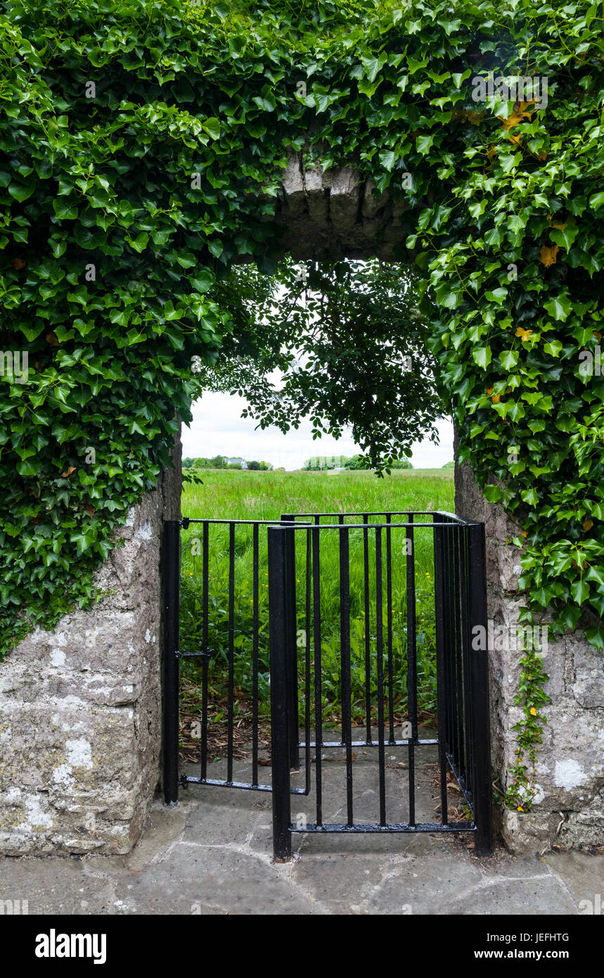 A kissing gate into a field at Neale, a small village in the south of County Mayo, Ireland Stock Photo