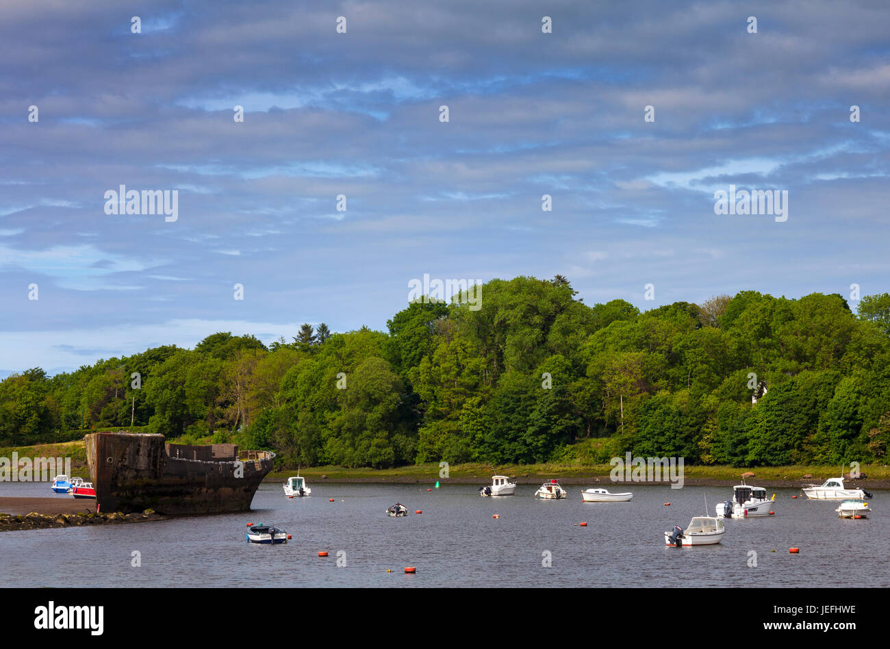 The wrecked 'Creteboom', a concrete boat built in 1917 on the bank of the River Moy, Beleek Woods, Balina, - Stock Image