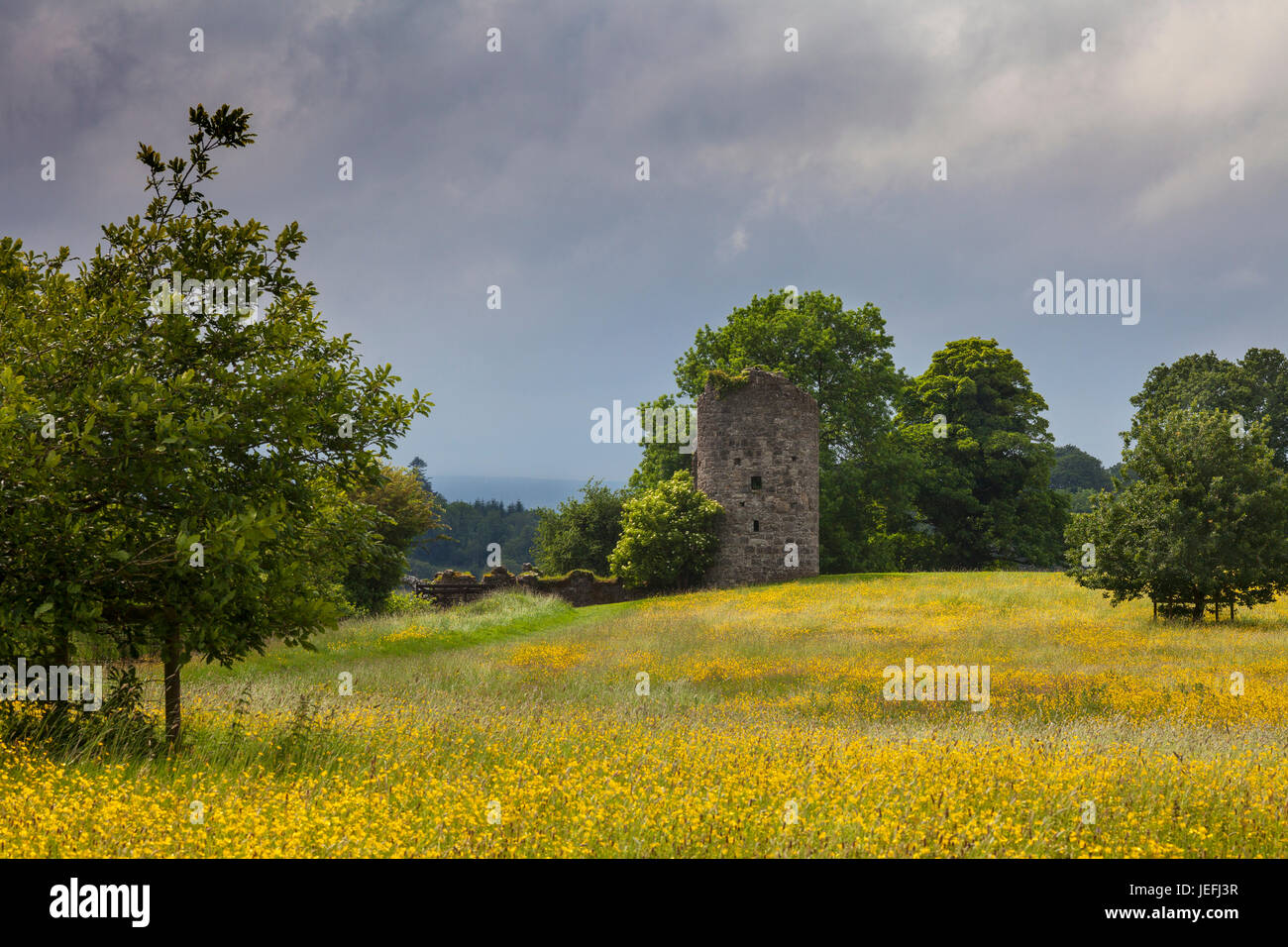 The Old Castle, a 17th-century tower house built in the early Crom Castle Estate, Upper Lough Erne, County Fermanagh, - Stock Image