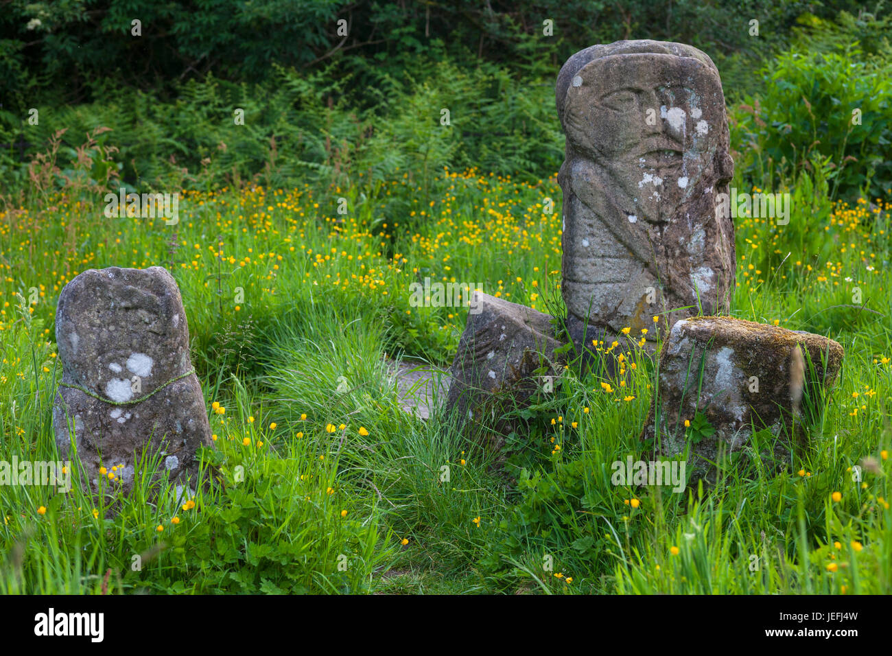 The rear of the Boa Island bilateral figure, regarded as one of the most enigmatic and remarkable stone figures - Stock Image