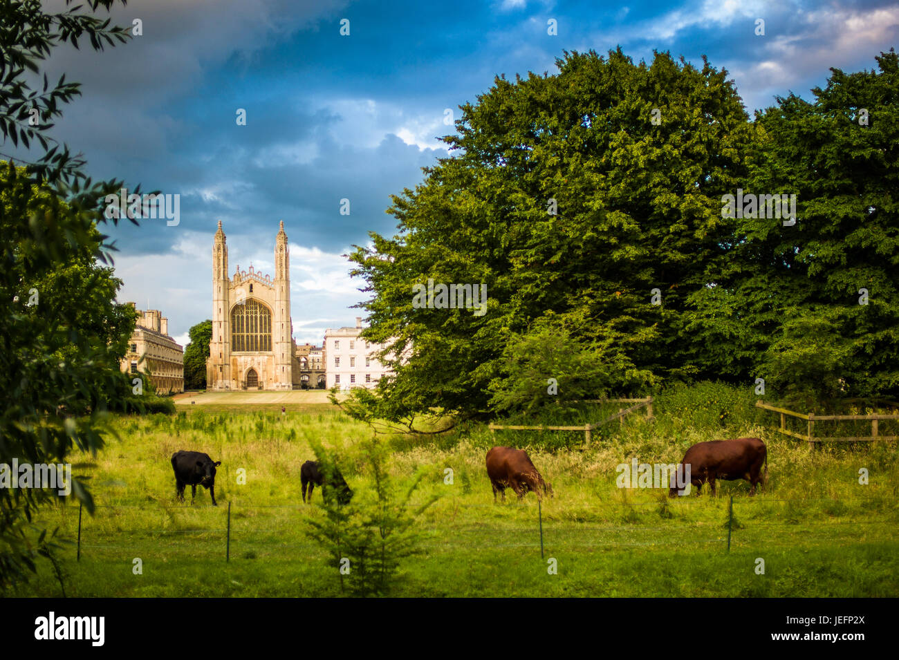 Kings College Chapel, a classic view across the Backs towards Kings College and Clare College, parts of the University - Stock Image