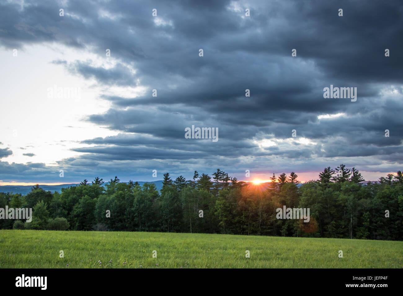 Dramatic Sunset Over Pine Trees Stock Photo