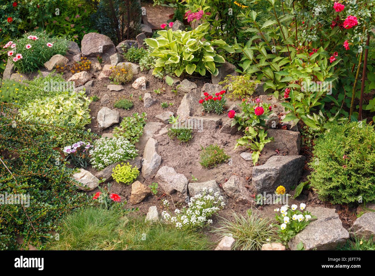 decorative blooming alpine slide landscape design home flower garden JEFT79