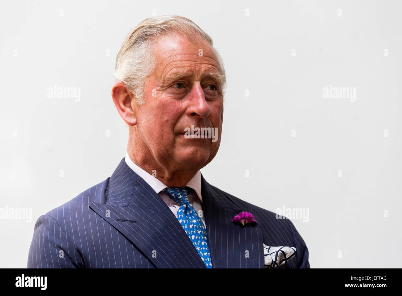 Prince Charles, The Prince of Wales, Portrait - Stock Image