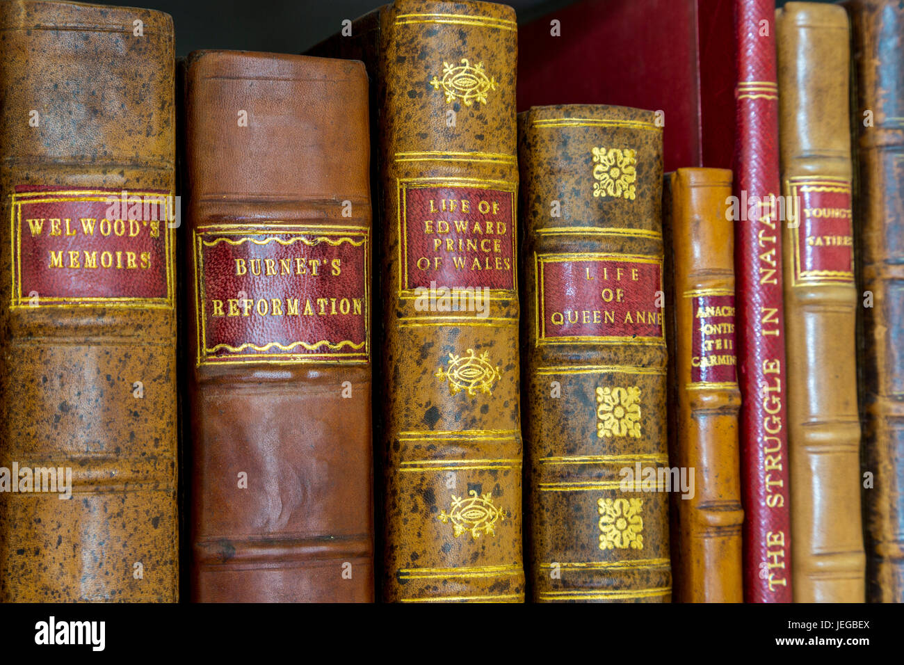 Yorkshire, England, UK.  Antiquarian Books in Library of a Country Estate. - Stock Image
