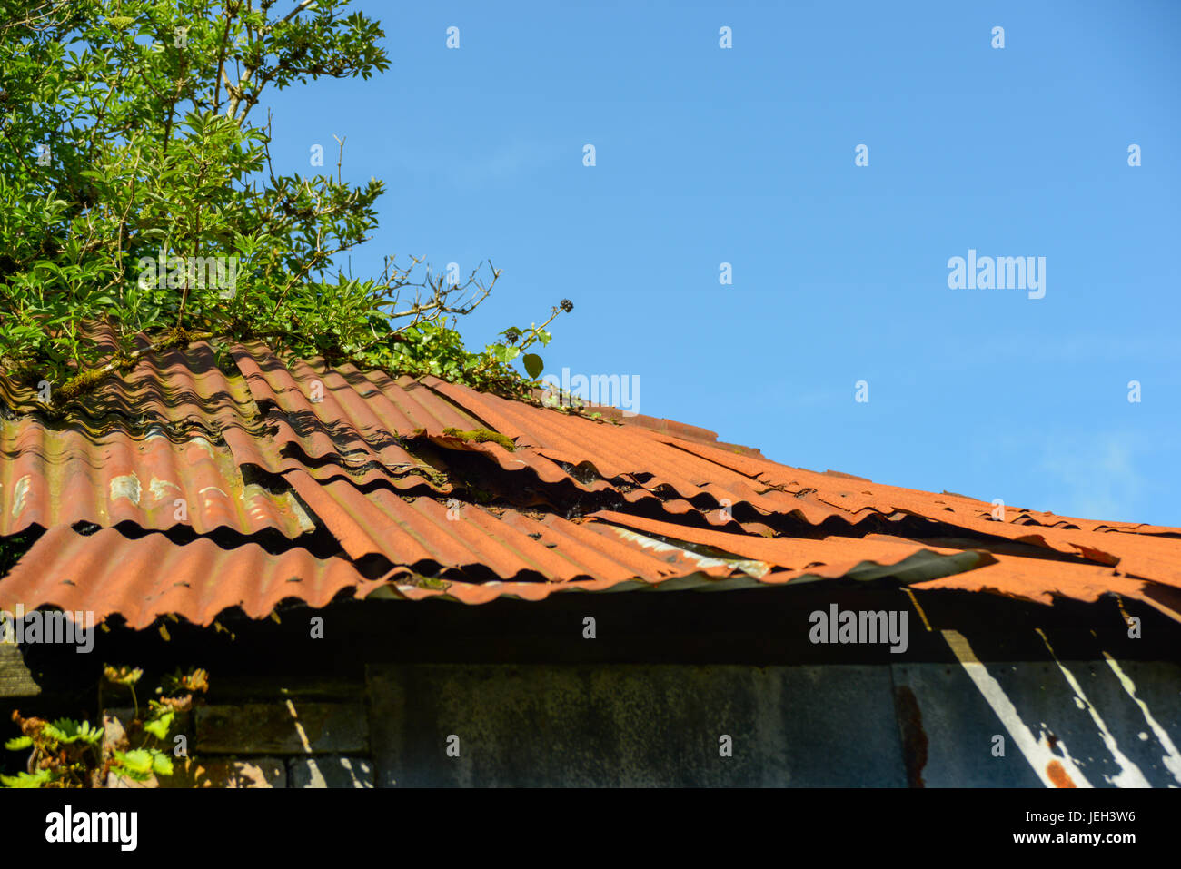 Rusted corrugated metal roof on farm building. - Stock Image