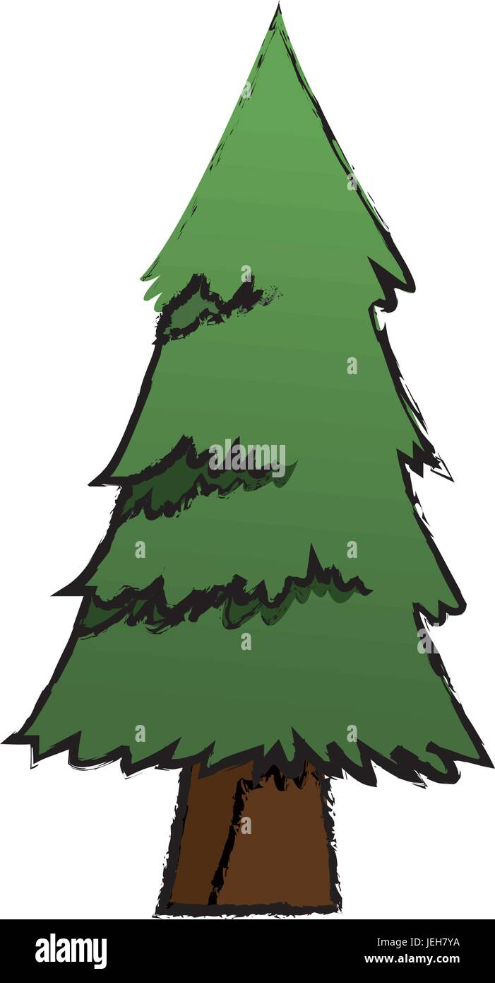 cartoon pine tree natural plant conifer image stock vector art rh alamy com cartoon pine tree clip art Cartoon Oak Tree