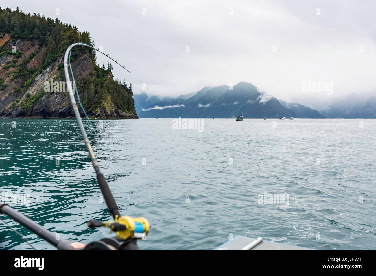 A fishing rod bends over as a halibut hits the line, foggy Kenai Mountains in the background, Resurrection Bay, - Stock Image