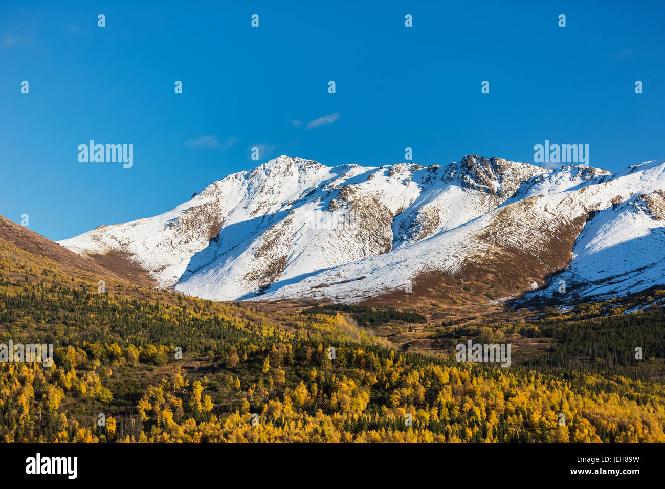 Eagle River Valley, autumn coloured trees filling the valley, snow covering the Chugach Mountains in the background, - Stock Image