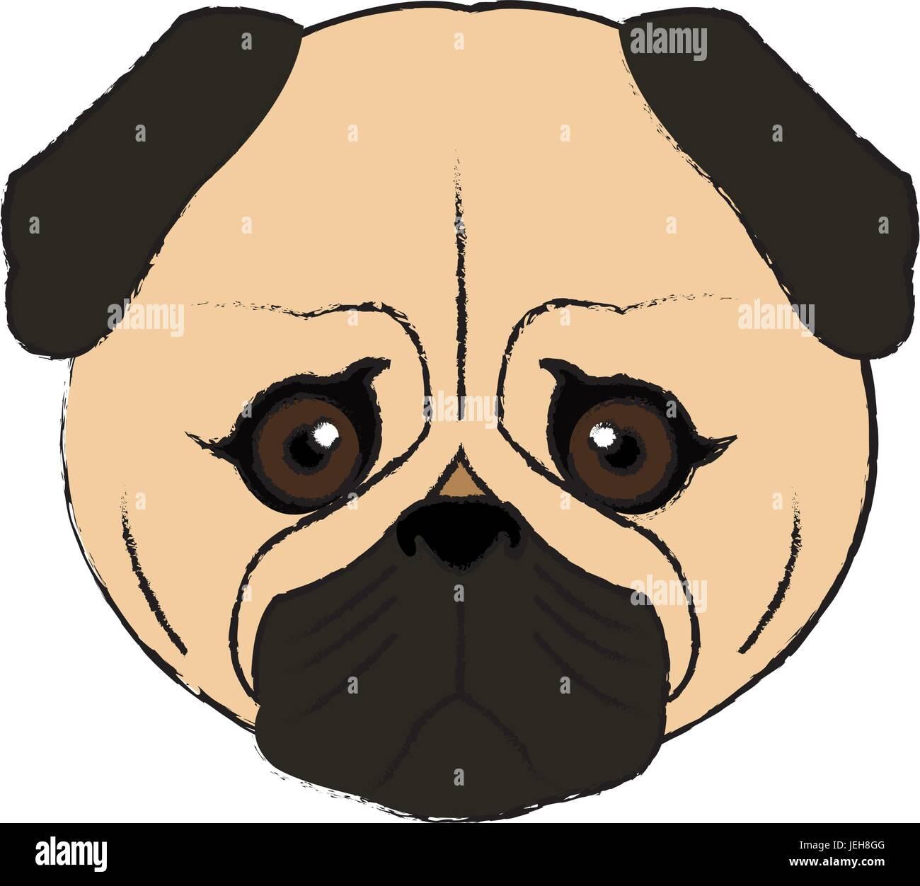cute face dog pug pet aminal image Stock Vector