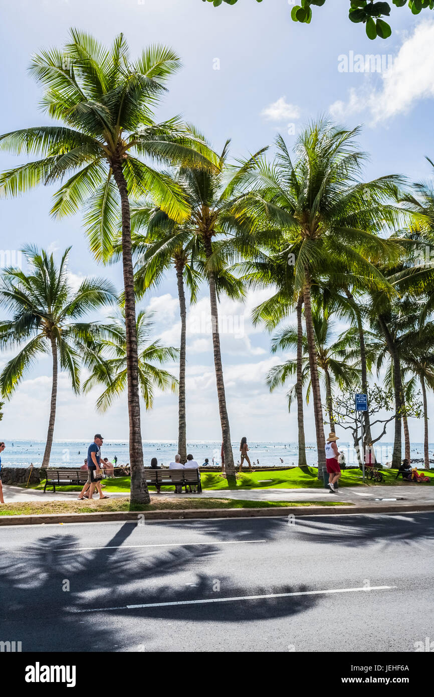Tourists walking along the street with palm trees and a view of the ocean in the background; Honolulu, Oahu, Hawaii, - Stock Image