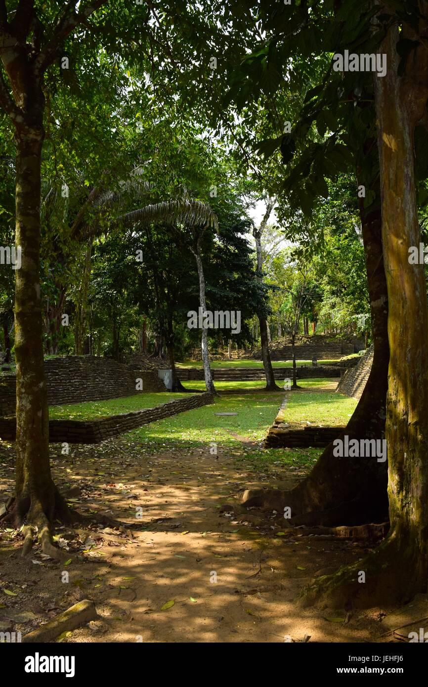 Nim Li Punit Mayan ball court - Stock Image