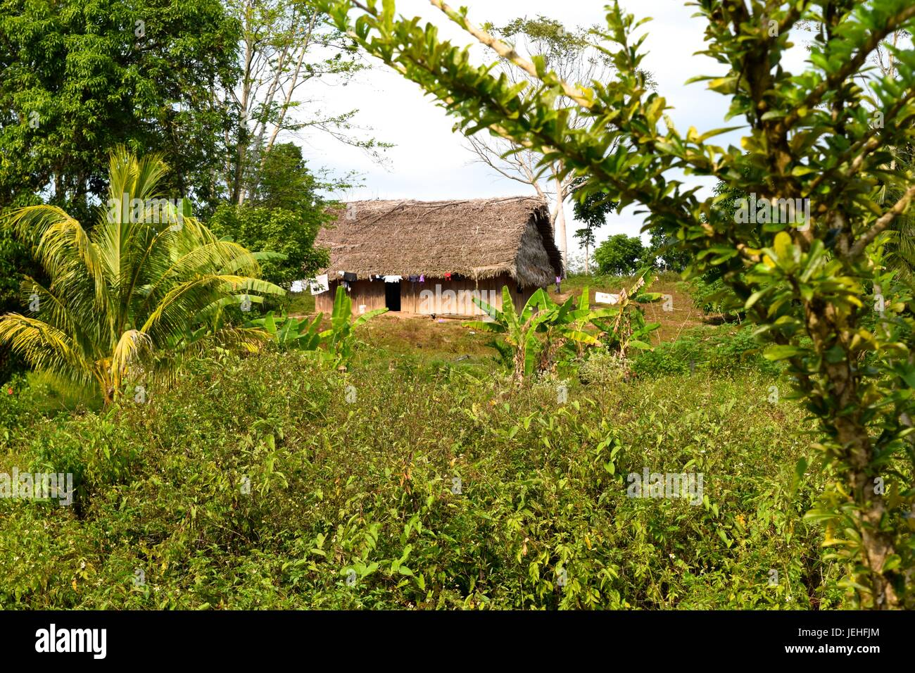 Traditional Mayan house - Stock Image