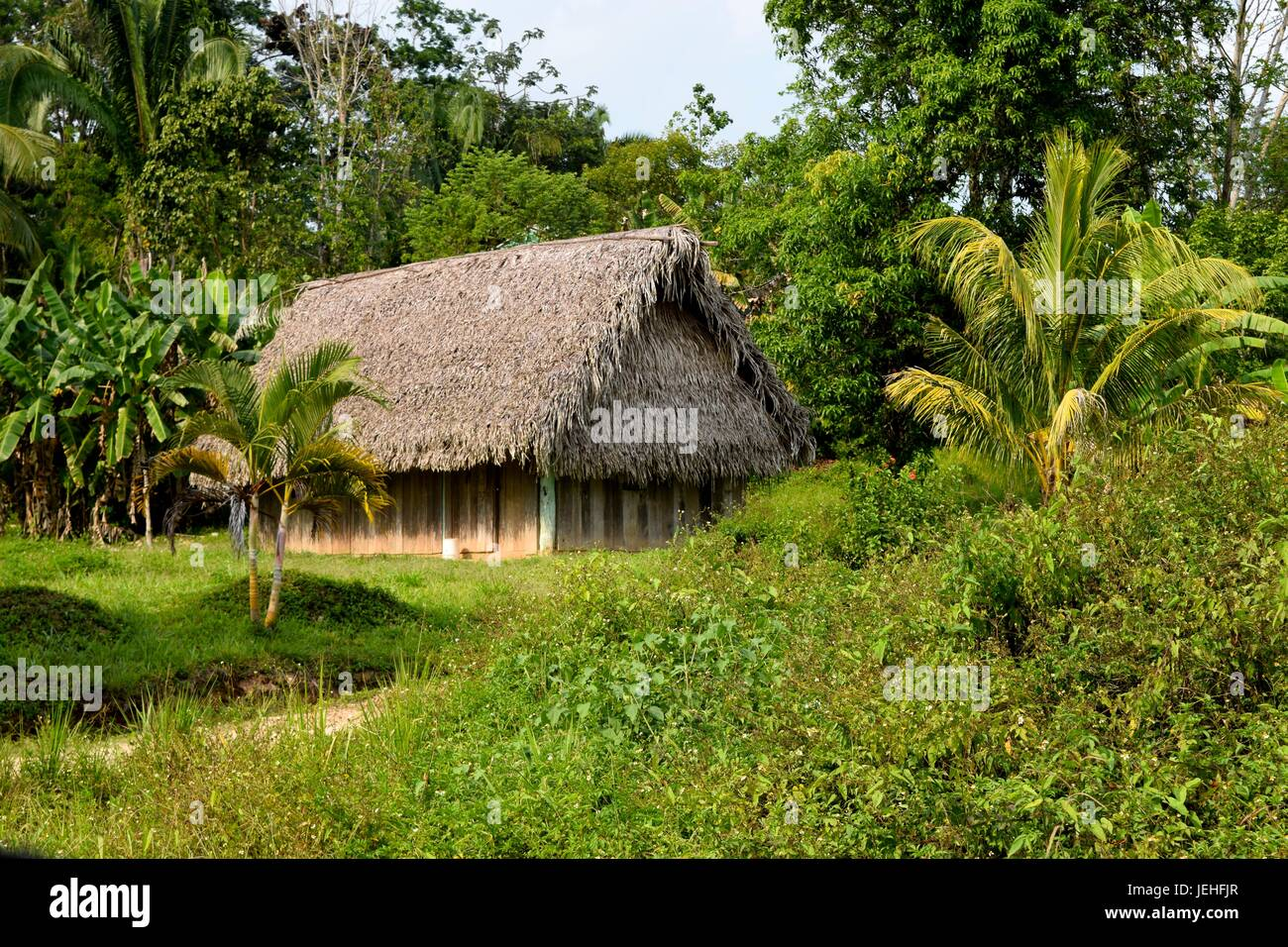 Traditional Mayan house in the Belizean countryside - Stock Image