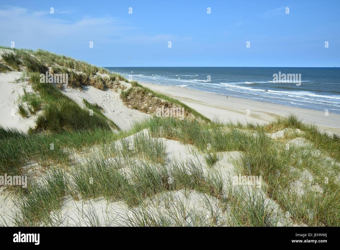 De hoge duinen nabij Strandpaal 45 Stock Photo