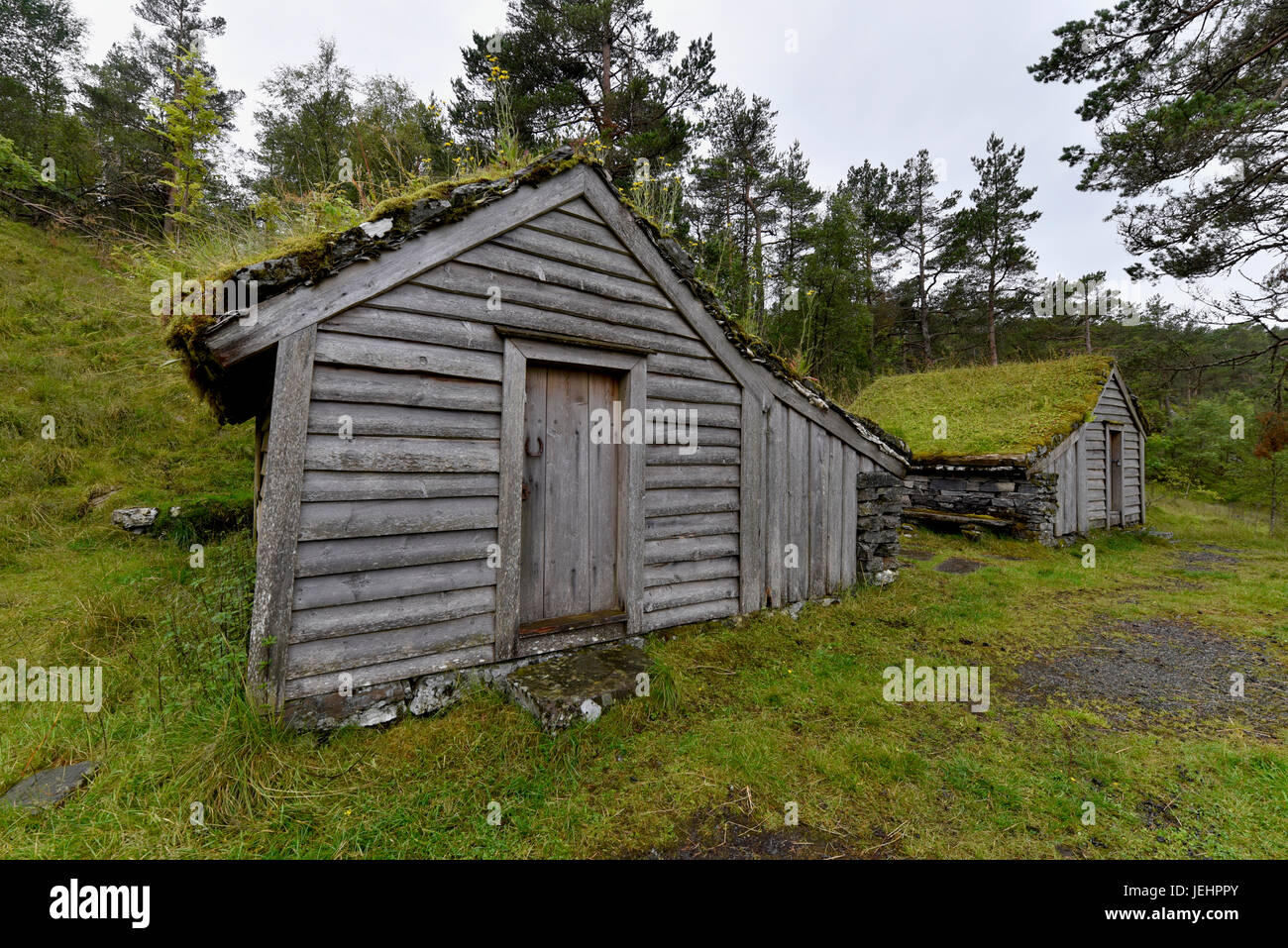 Grass roof on an old farm structure atop a mountain on the outskirts of Bergen, Norway. - Stock Image