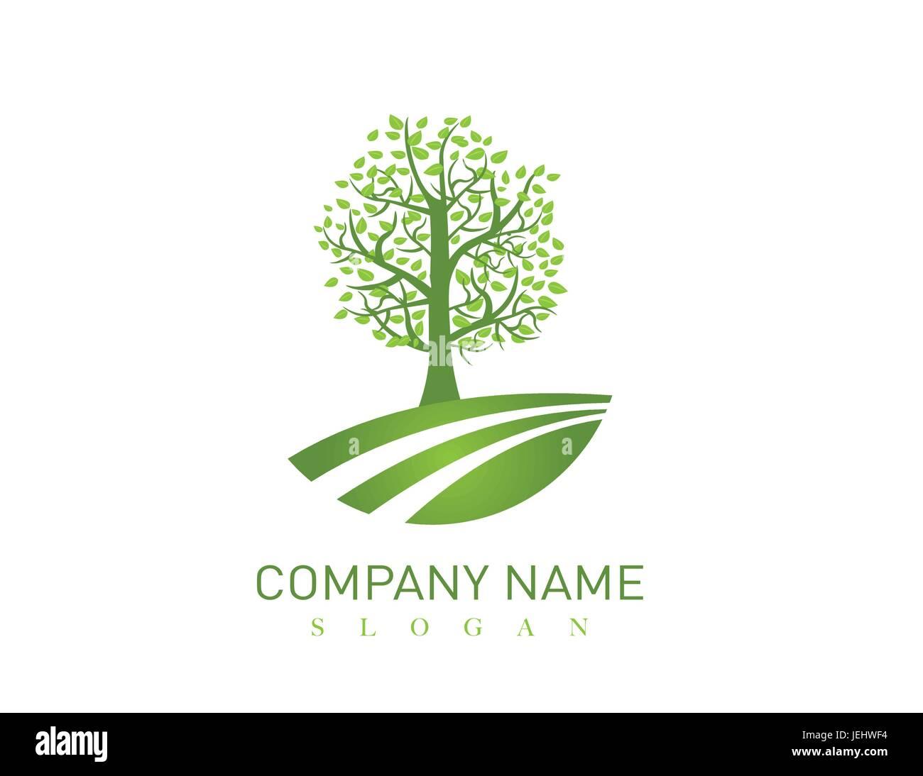 Oak tree design - Stock Image