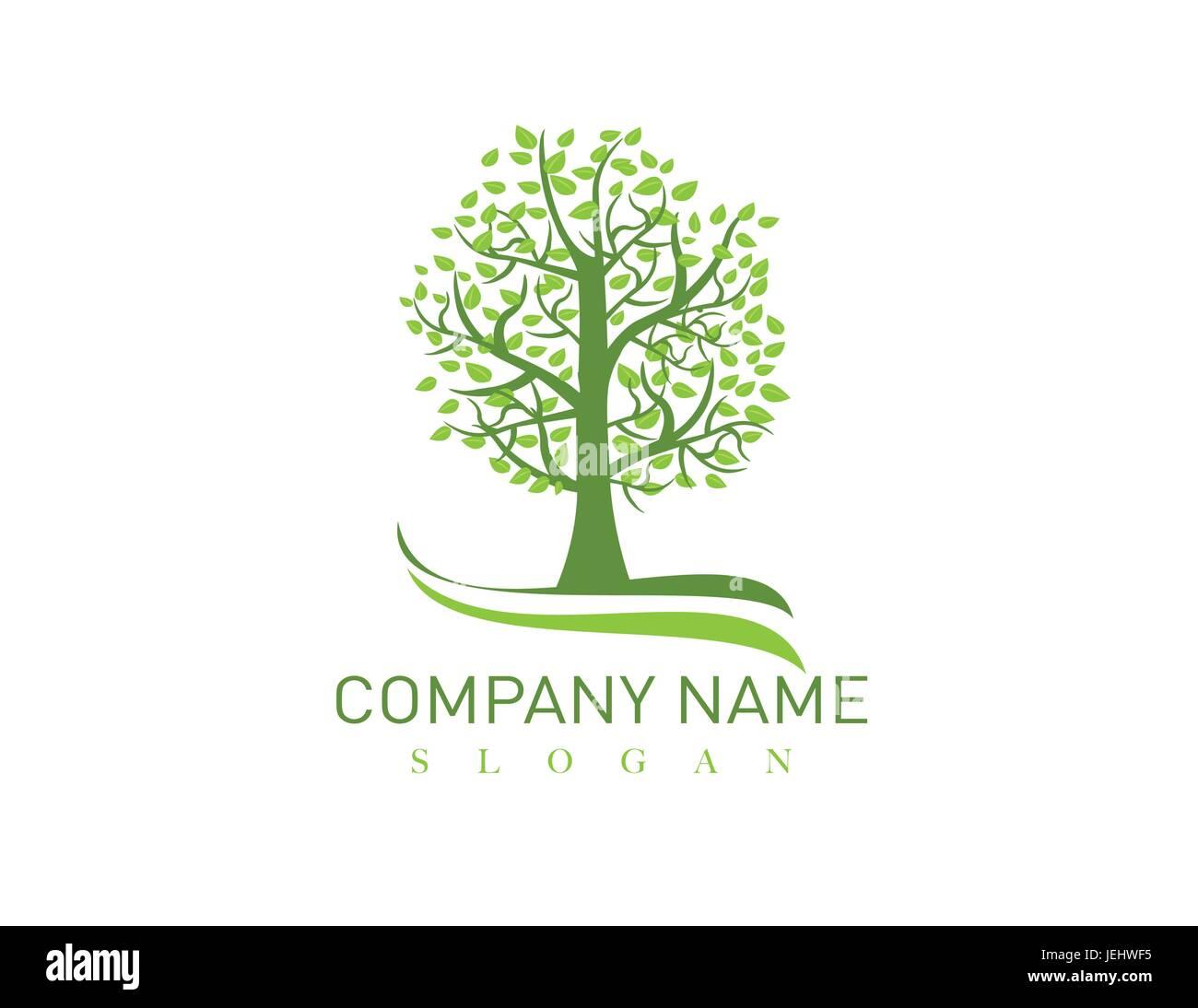 Oak tree logo - Stock Image