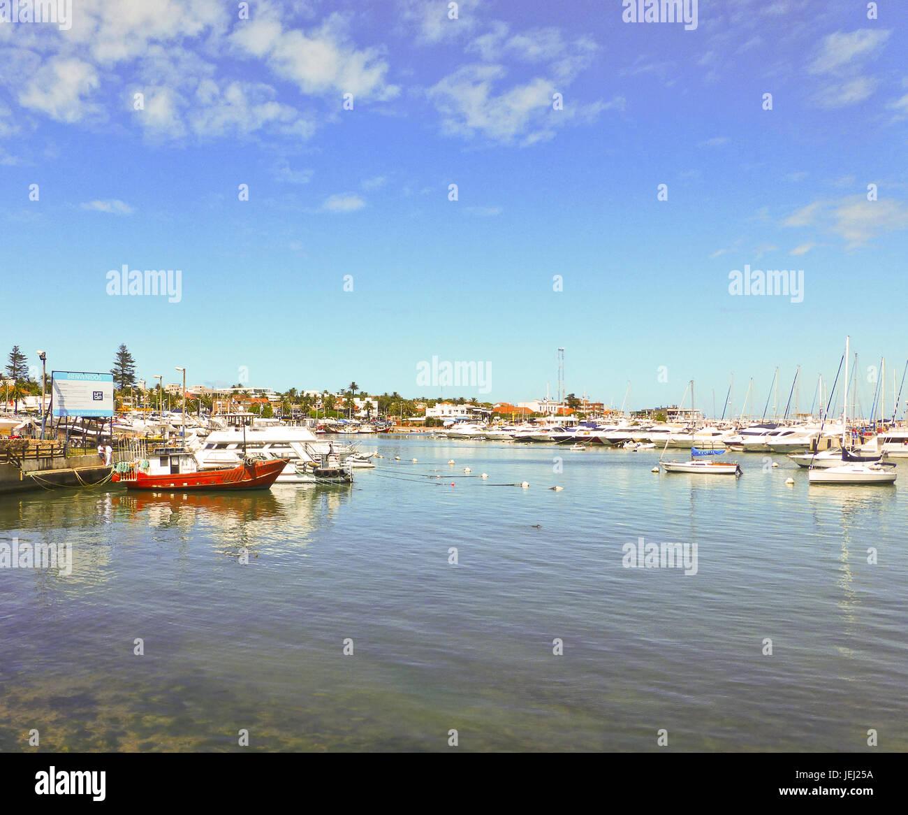 Punta del Este Port View - Stock Image