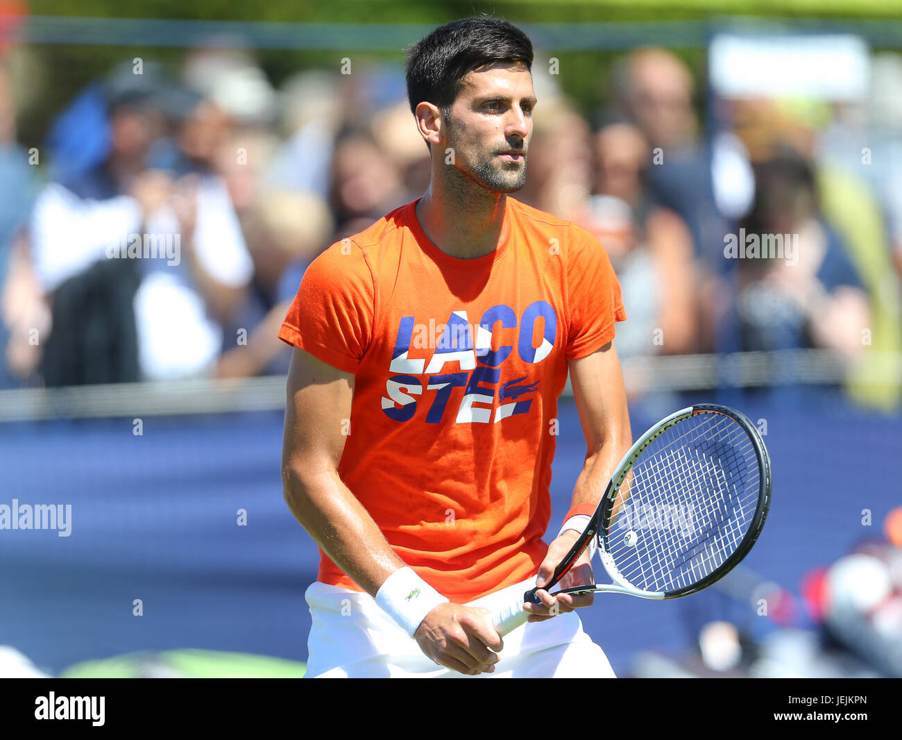 Eastbourne, UK. 26th June, 2017.  Novak Djokovic of Serbia practices during day two of the Aegon International Eastbourne - Stock Image