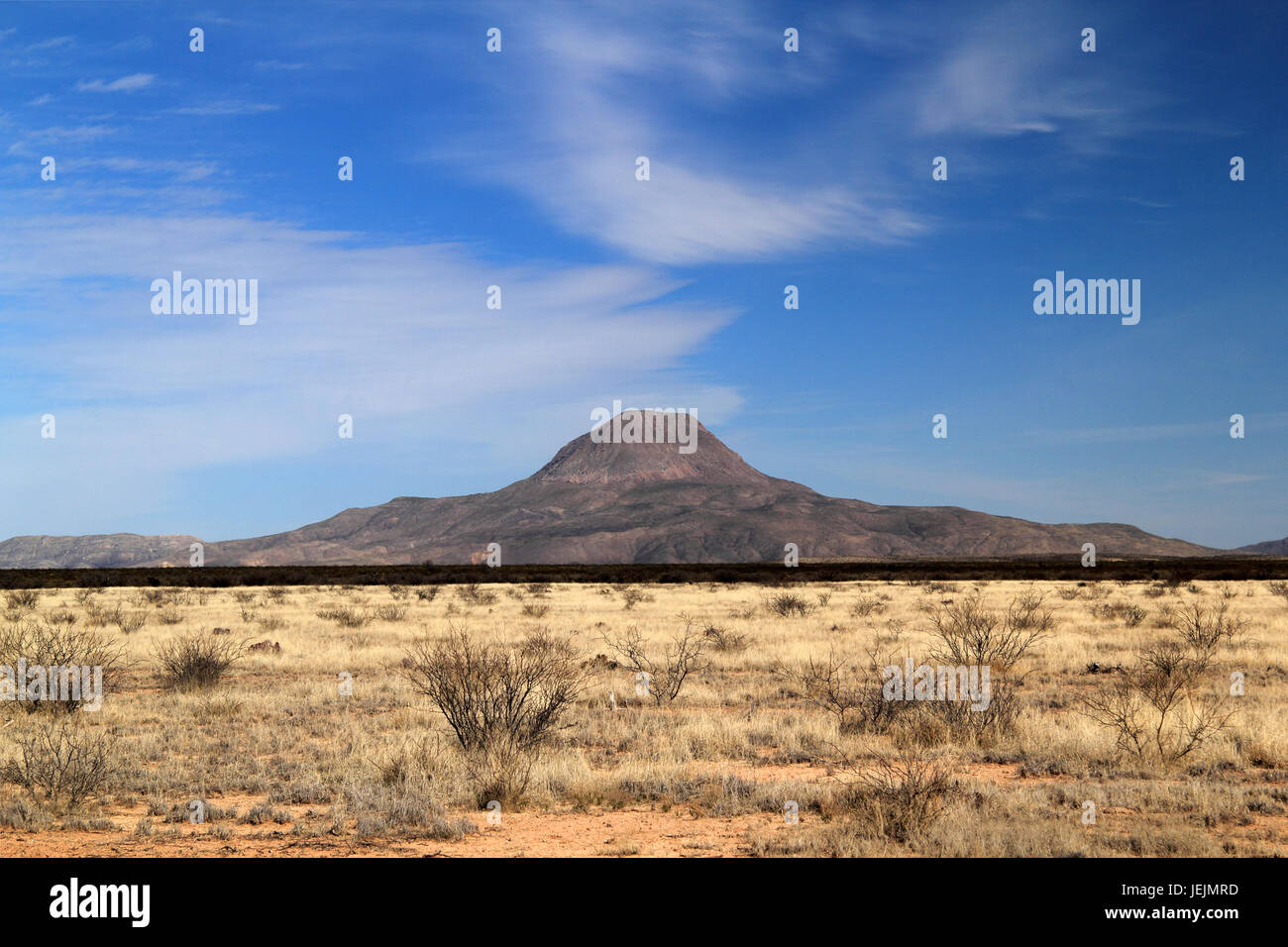 Beautiful southwestern desert landscapes abound along the short but scenic Texas State Highway 118, located near - Stock Image