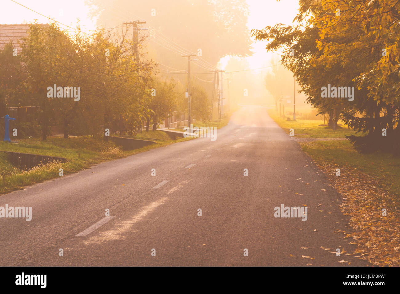 Foggy road - Stock Image
