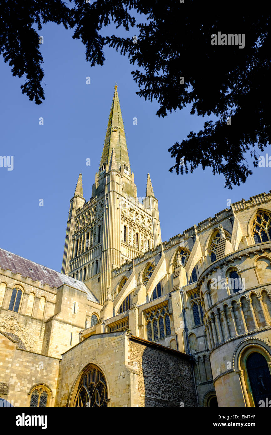 The spire and tower of the christian cathedral in Norwich (Norfolk, England), founded by the normans in the eleventh - Stock Image
