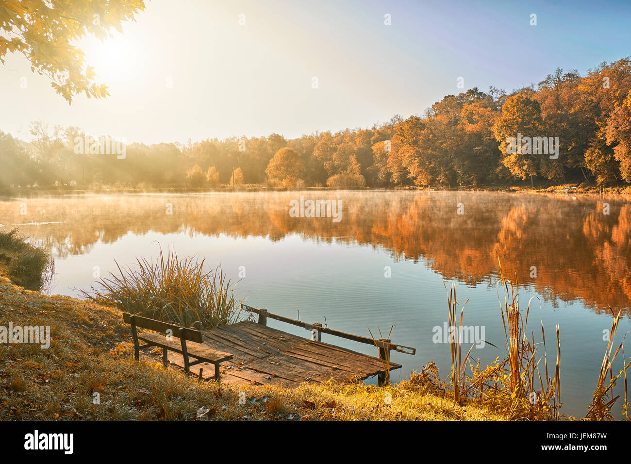 Autumn forest and lake in sunrise - Stock Image
