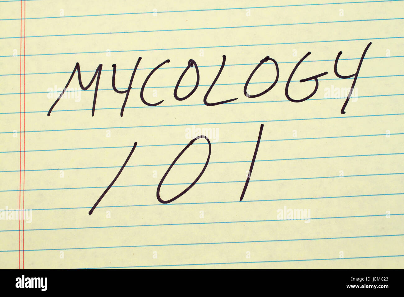 The words 'Mycology 101' on a yellow legal pad - Stock Image