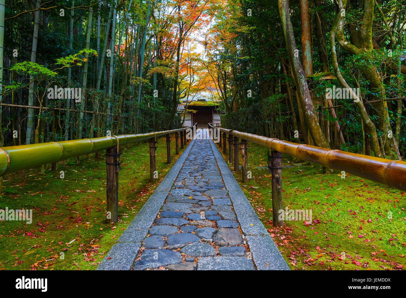 Colorful Autumn at Koto-in Temple in Kyoto, Japan - Stock Image
