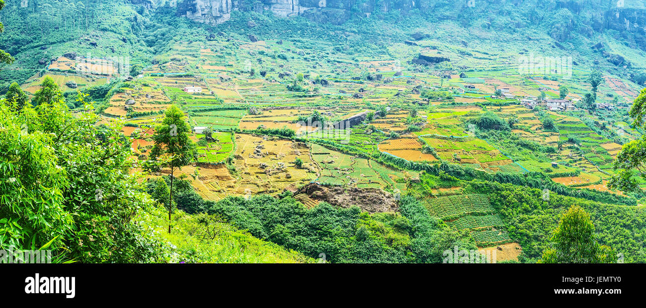 Panorama of the farm lands in mountains of Sri Lanka, Central Province is agricultural region with picturesque landscapes, - Stock Image