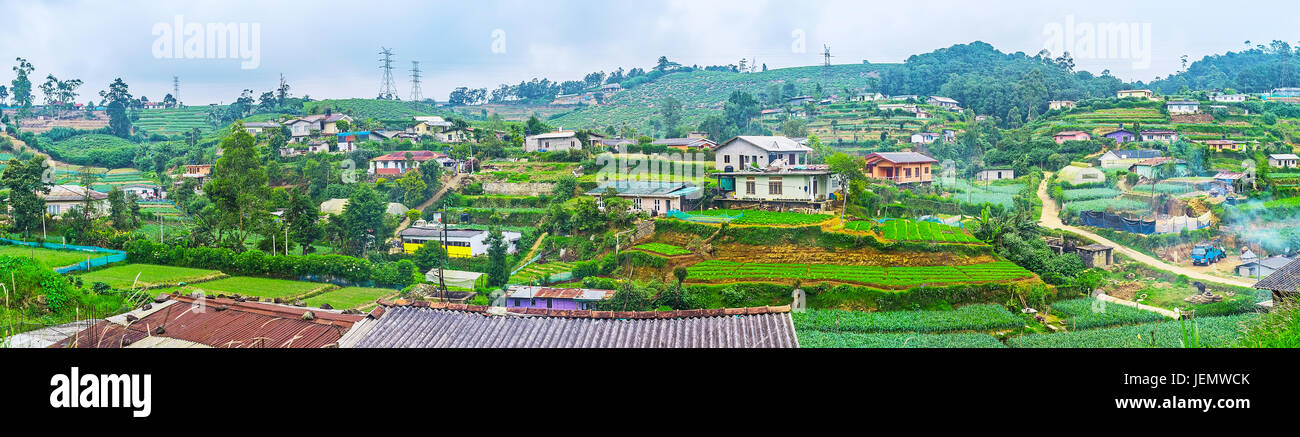 Panorama of Nuwara Eliya farm lands with small houses of locals, kitchen gardens and fields with green plants, Sri - Stock Image