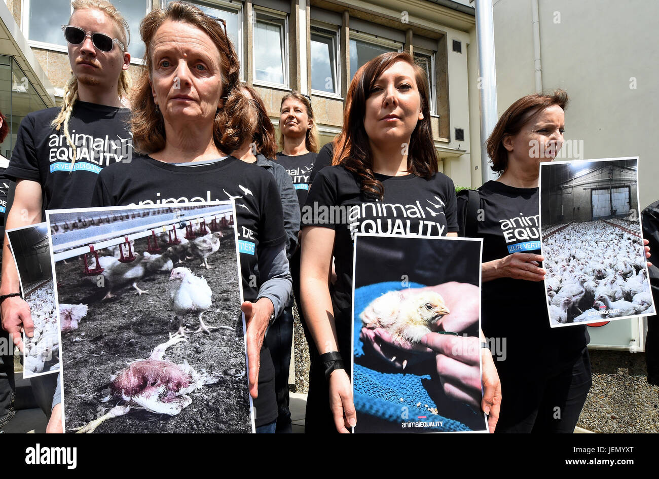 Representatives of 'Animal Equality' hol up posters showing images from a chicken farm during an event against - Stock Image