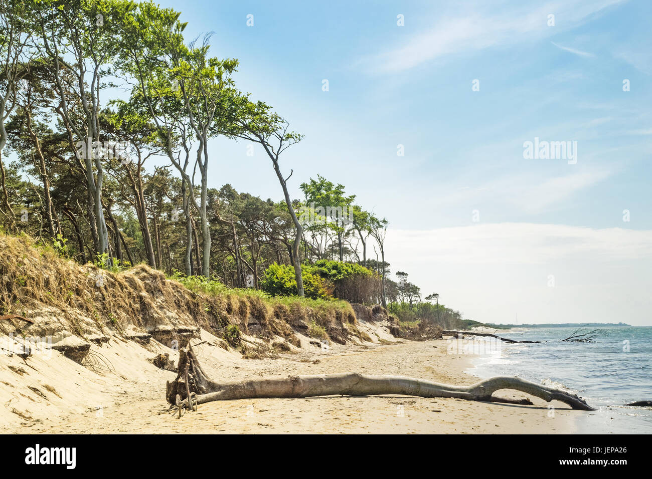 Western beach on the peninsula Darss at Mecklenburg- Western Pomerania, Germany Stock Photo