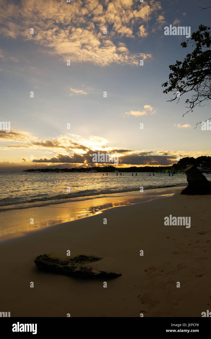 Sunset in tropical beach of Sainte Anne - Caribbean Sea - Guadeloupe tropical island - Stock Image