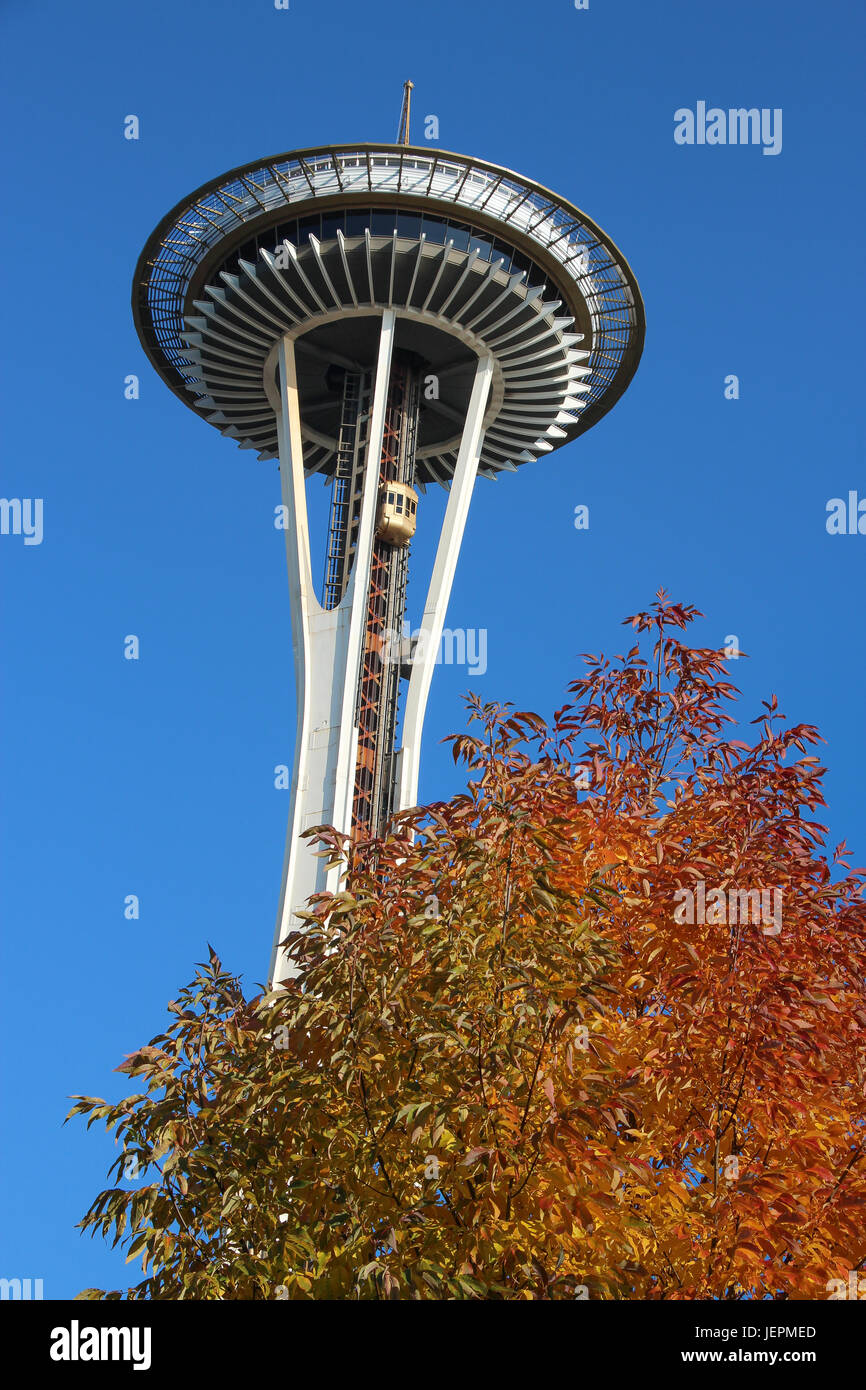 The iconic white Space Needle in Seattle, Washington's 1962 Worlds Fair towers above a tree with colorful autumn - Stock Image