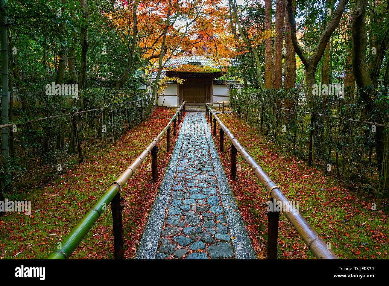 Colorful Autumn at Koto-in Temple in Kyoto - Stock Image