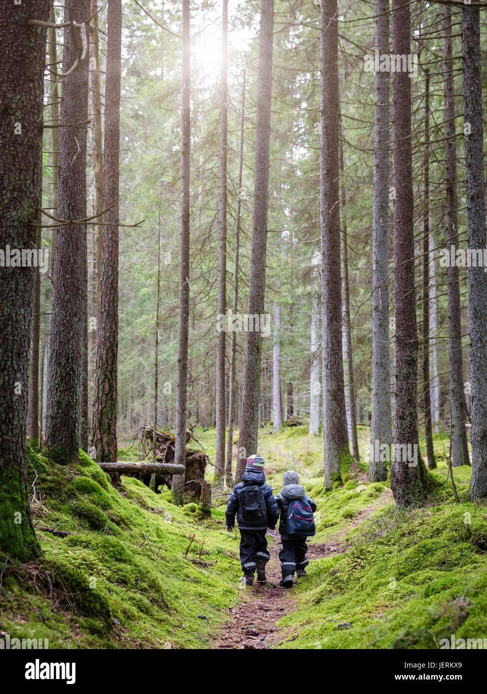 Children walking in forest - Stock Image