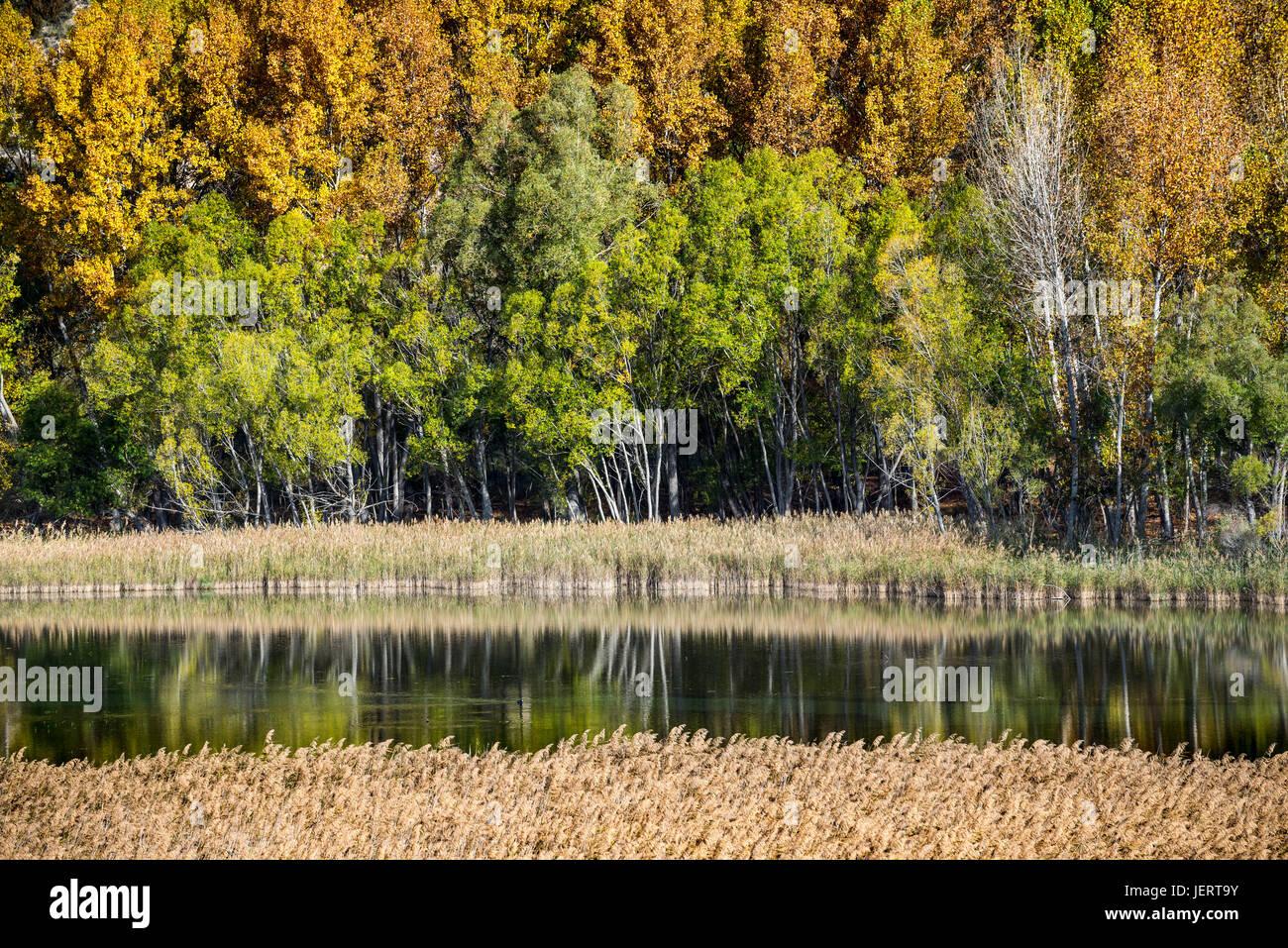 Looking across the lagoon at Una in Autumn, Serrania de Cuenca, Castilla-la mancha, Central Spain - Stock Image