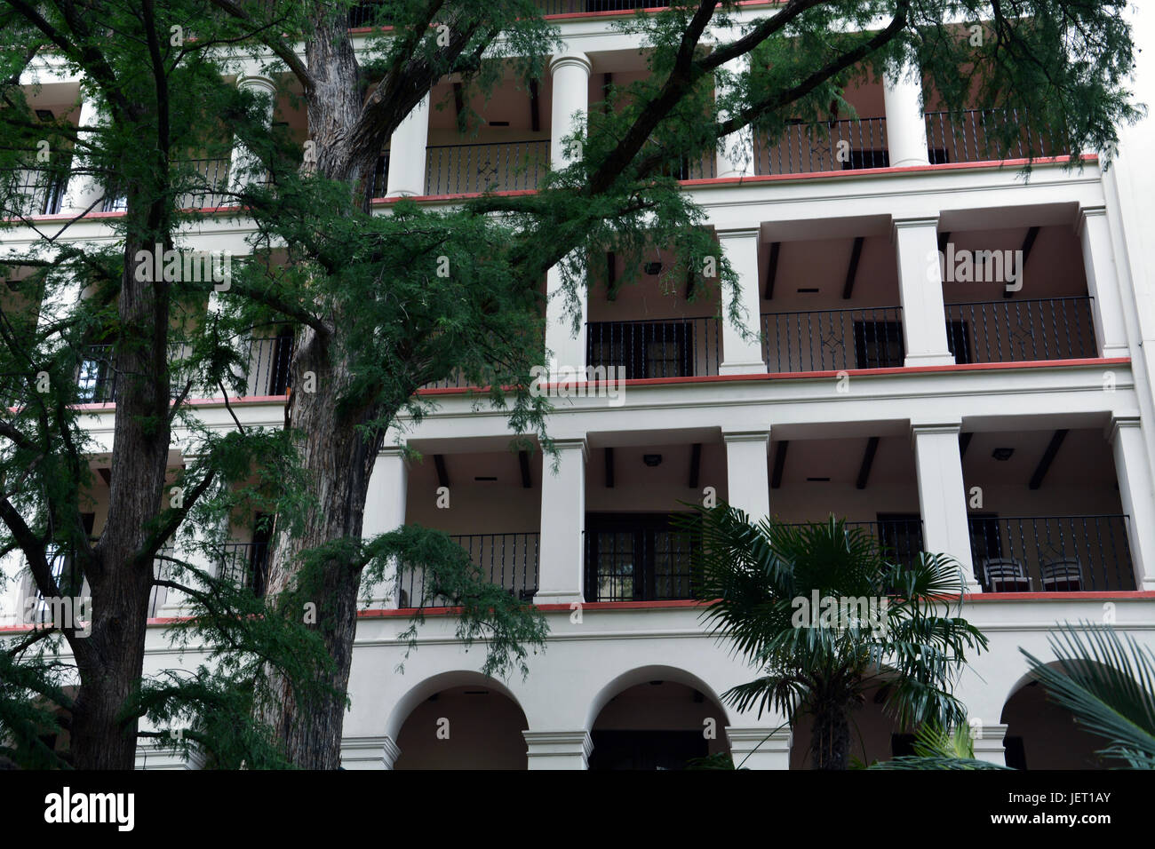 Guest Balconies Are Shaded By Giant Cypress Trees Along The