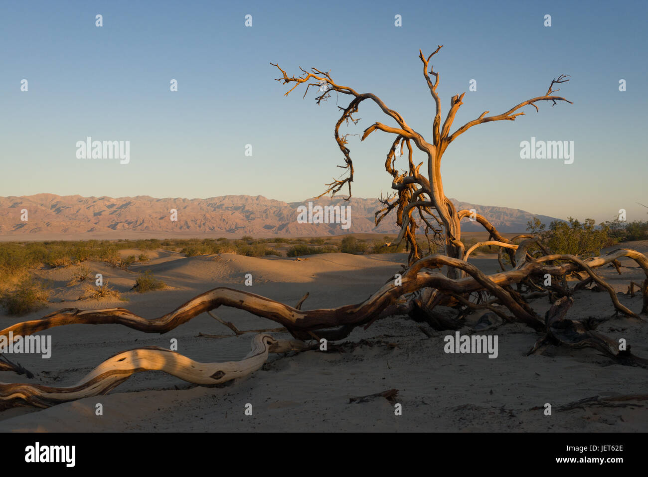Sunrise in Death Valley National Park - Stock Image