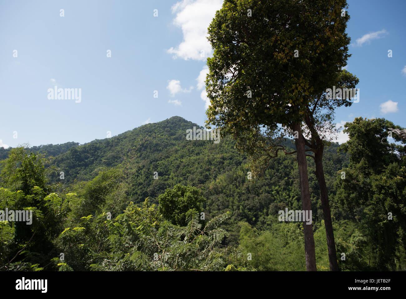 Thailand landscape Stock Photo