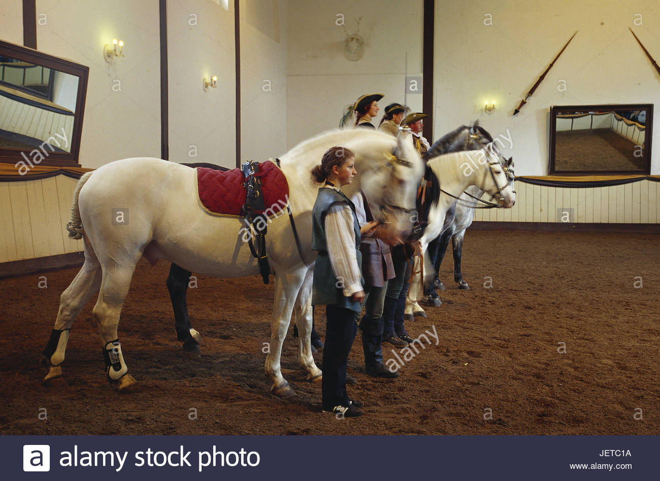 Germany, Lower Saxony, Bueckeburg, princely court riding academy, riding showing, bleed, preview, riding hall, Weser - Stock Image