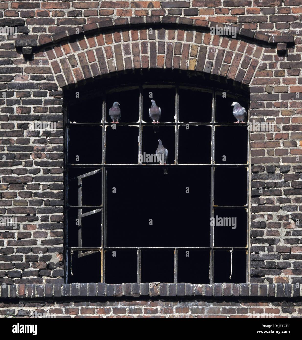 Germany, food, dysentery area, North Rhine-Westphalia, food-old food, former coal-mine Carl, hoist frame, Malakowturm, - Stock Image