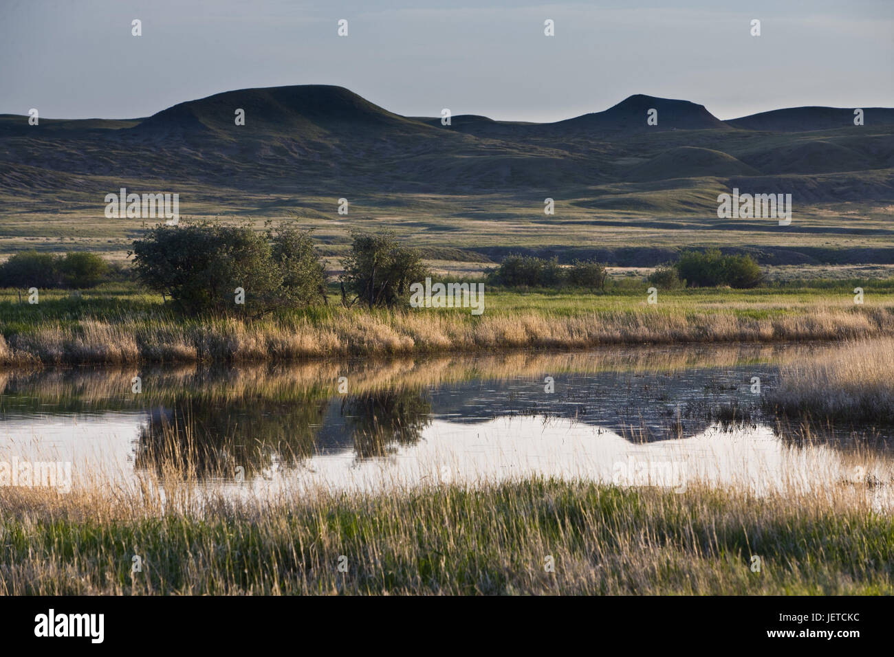 Canada, Saskatchewan, Grass's country Nationwide park, west block, flux Frenchman, valley, scenery, - Stock Image