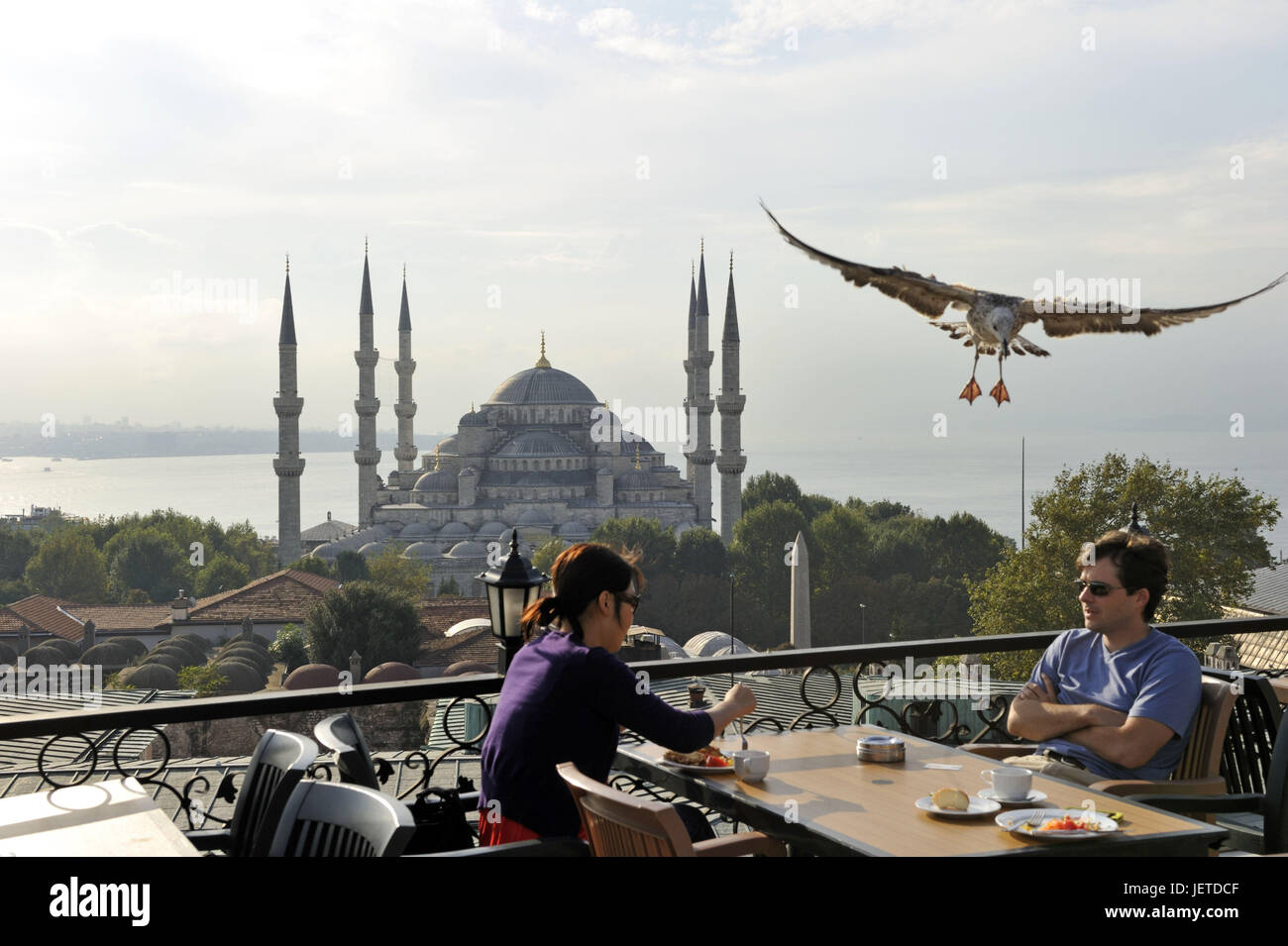Turkey, Istanbul, sultan's Ahmed's mosque, blue mosque, tourist and a gull in the foreground, - Stock Image